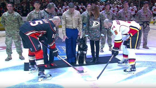 Bomb-Sniffing Dog Drops Puck at Anaheim Ducks Game