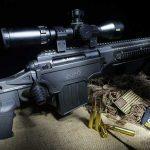 apo's sefr rifle