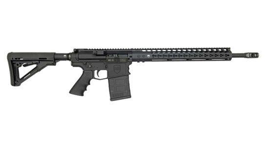 dark storm industries ds-10 rifle