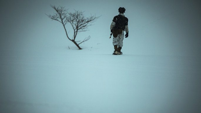 US Marines Cold Weather Training tree