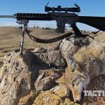 insight shooting systems 223 ackley improved hunting rifle