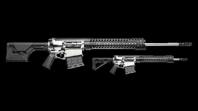 patriot ordnance P300 rifle