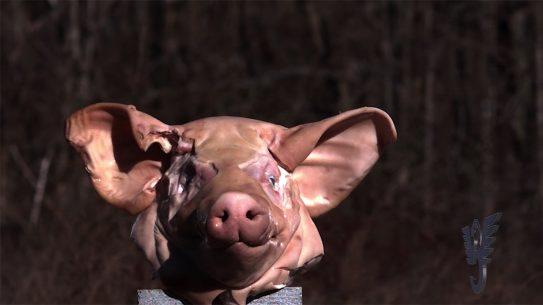 Wilson Combat 458 HAM'R Carbine pig head