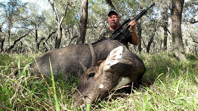 bill wilson ar hunting 338 federal rifle
