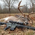 bill wilson ar hunting game