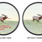Nikon Monarch 3000 Stabilized image