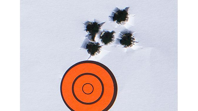 savage model 10 grs rifle target best group