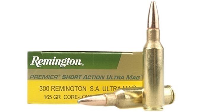 magnum ar-10 ammo