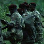ak-47 rifle jungle walk