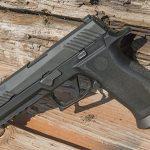 Bismarck Police Department sig sauer p320 pistol profile