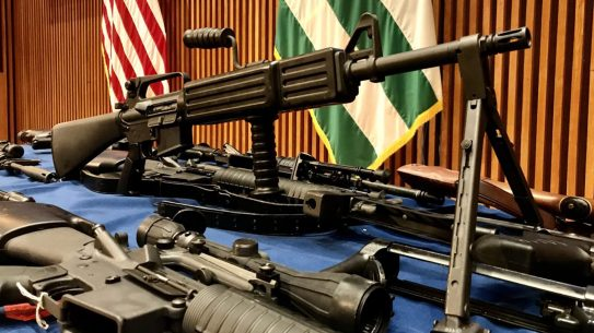 nypd seizure rifle