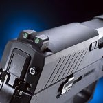 chicago police department sig p320 pistol rear sight