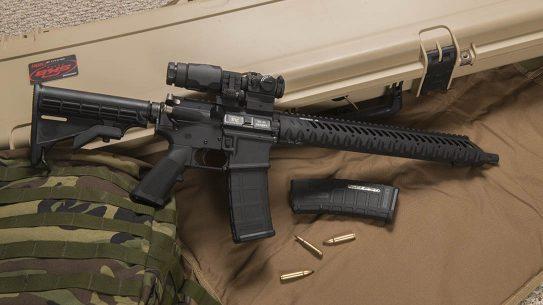 .25-45 sharps, .25-45 sharps cartridge, .25-45 sharps cartridge rifle