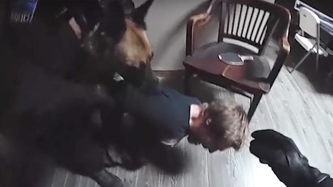 Police Dog Responds