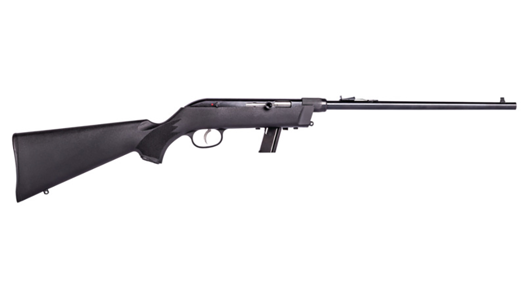 Model 64 Takedown