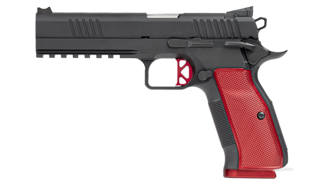 The Dan Wesson DWX blends 1991 and CZ 75 designs.
